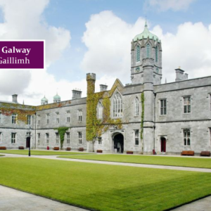 Launch of a Visual Analytics Summer School at NUI Galway