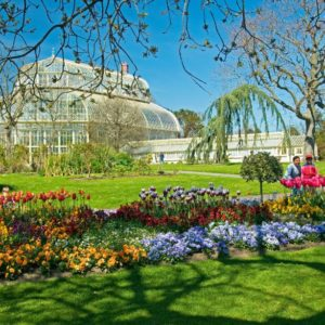 Teagasc Horticulture Education in the National Botanic Gardens in COVID times